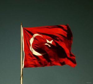 Sanalsinif.net - bayrak